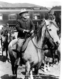 tr on horse